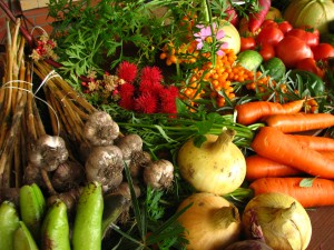 organic grown vegetables
