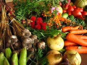 organic grown vegetables