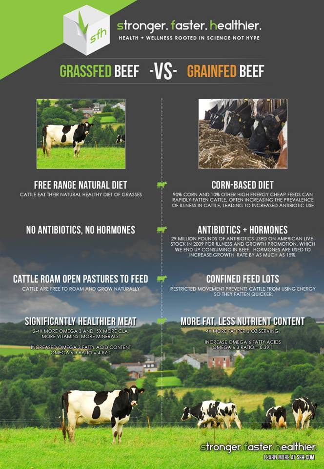Grass vs. grain fed beef